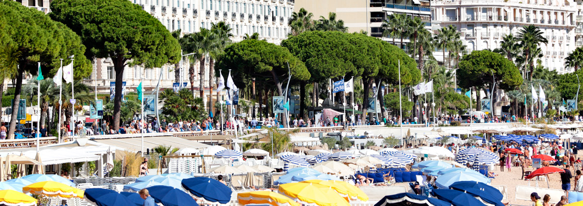 Holiday packages & Hotels in  Cannes