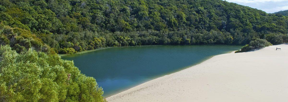 image of fraser island