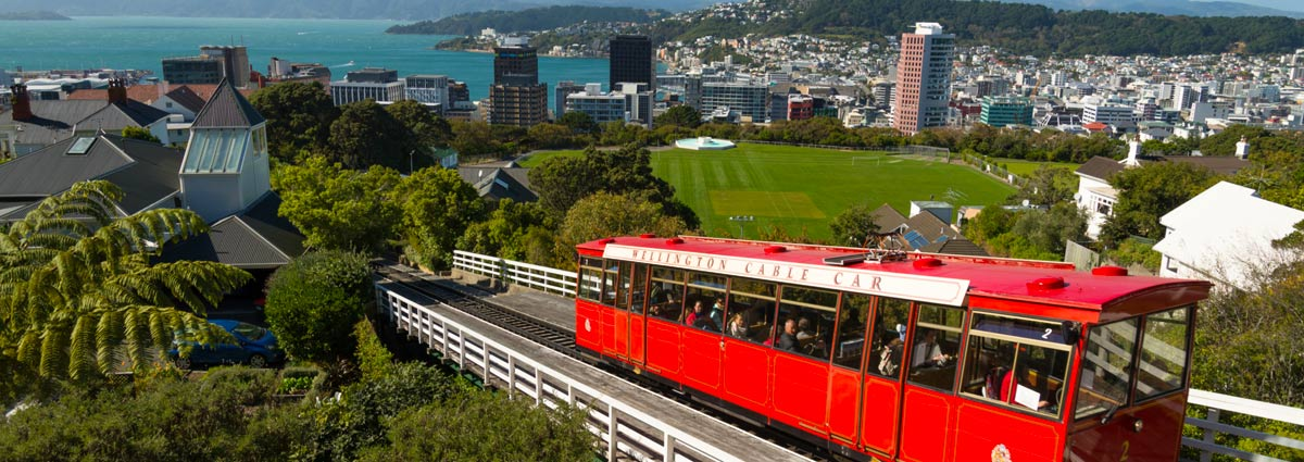 Holiday packages & Hotels in  Wellington