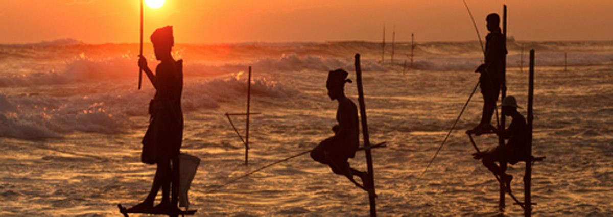 Beach Holiday packages & Hotels in southern Sri Lanka