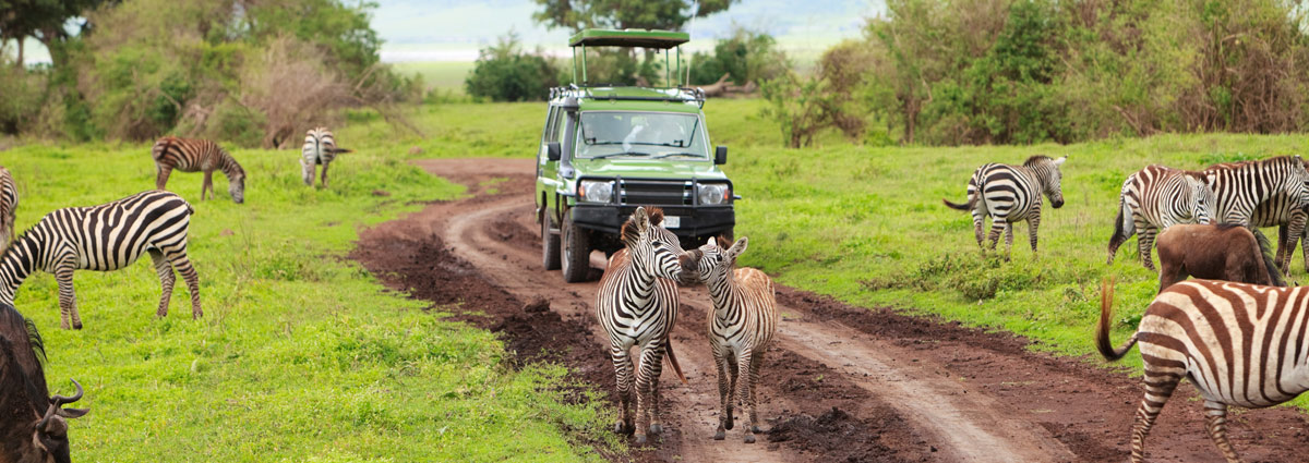 Holiday packages & Hotels in Arusha