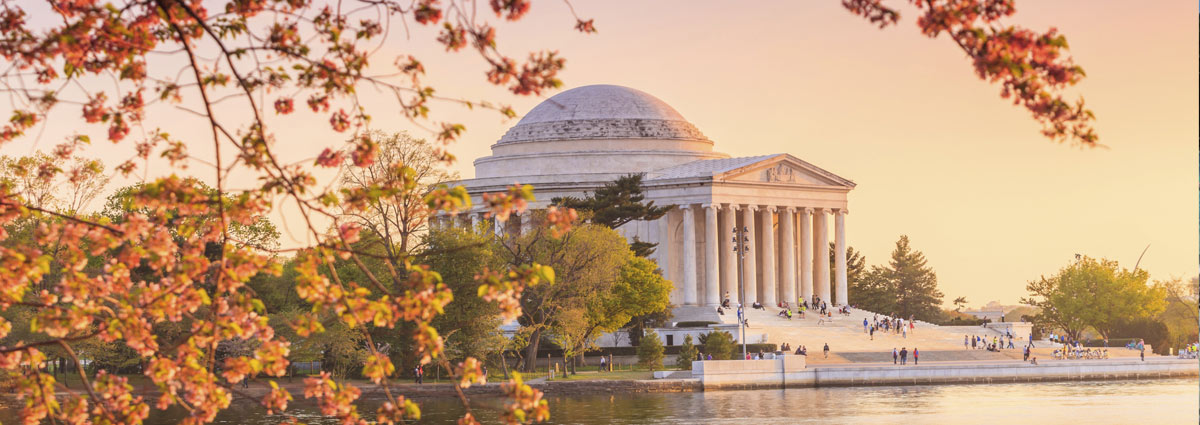 Holiday packages & Hotels in  Washington D C