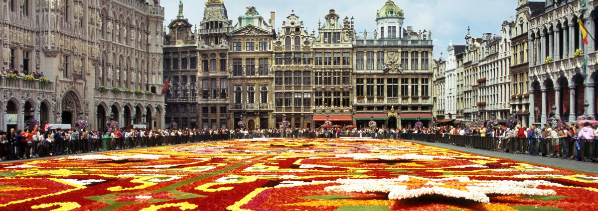 Holiday packages & Hotels in  Brussels