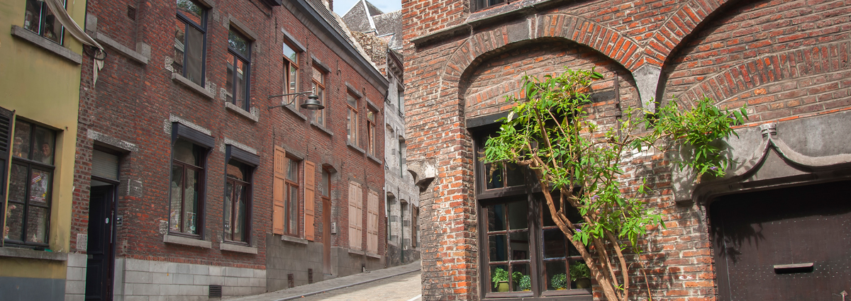 Holiday packages & Hotels in  Mons