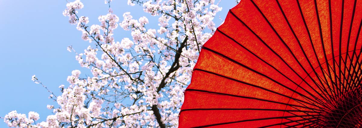 Holiday packages & Hotels in  Kyoto