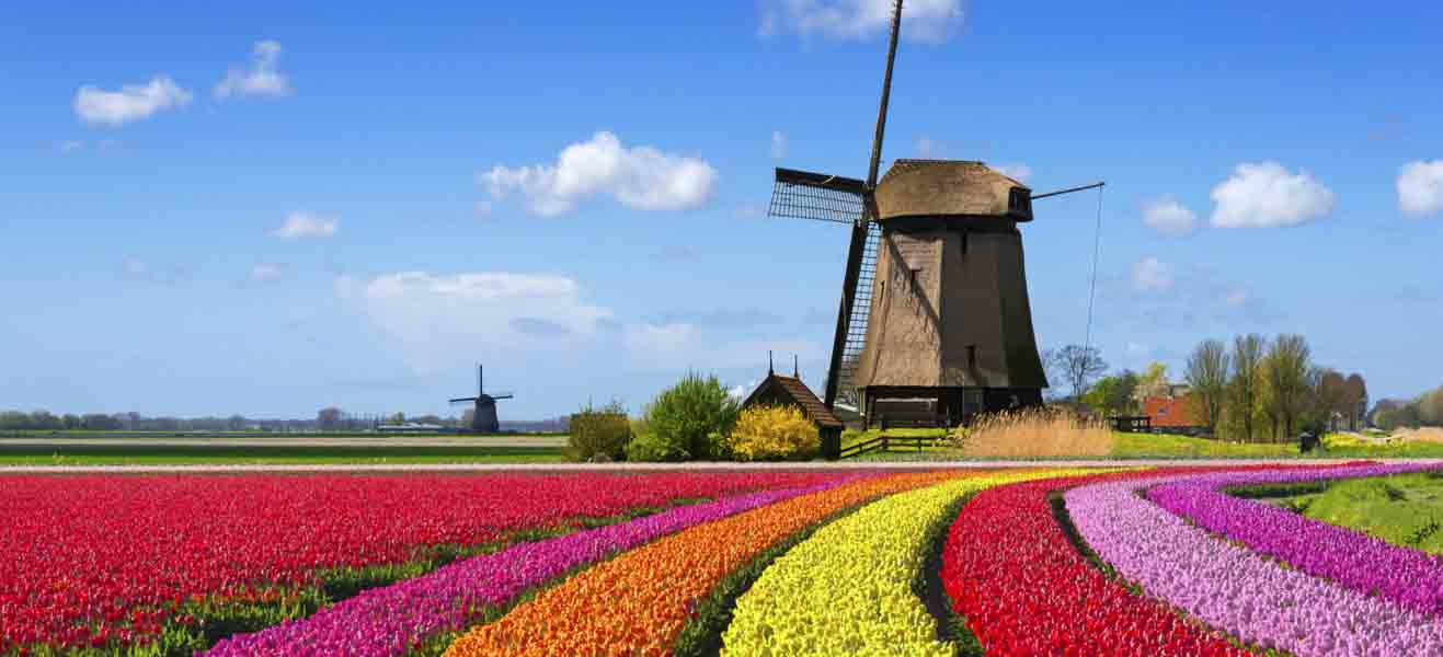 Holiday packages & Hotels in  Netherlands