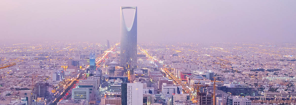 Holiday packages & Hotels in  Saudi Arabia