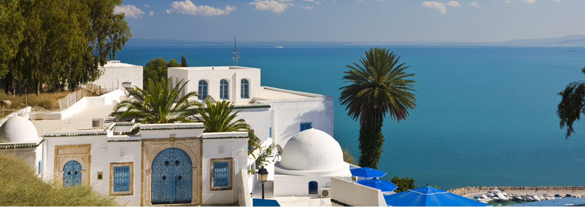Holiday packages & Hotels in Tunis
